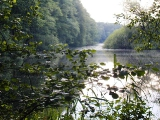 Die Ems und das Naturschutzgebiet Achterberge_4