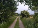 Die Ems und das Naturschutzgebiet Achterberge_5