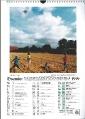 Heeder Heimatkalender 1999_2