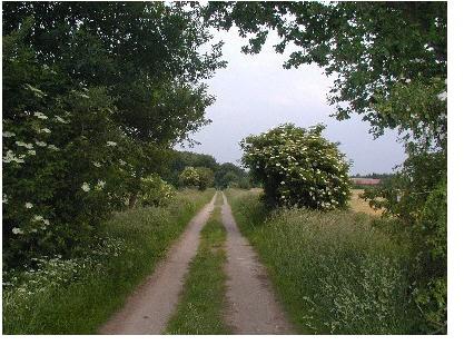 Naturschutzgebiet Achterberge
